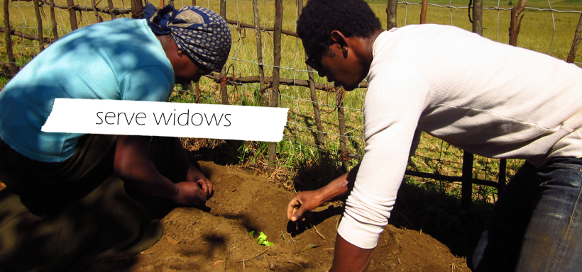 Serve widows